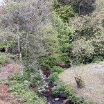 Stream and picnic area,