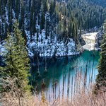 Kayindi lake - the sunken forest