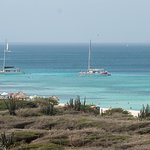 Cats at anchor, west coast of Aruba