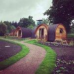 Whitemead Forest Park ภาพถ่าย