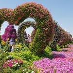Beautiful flower hearts