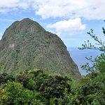 Foto di Tet Paul Nature Trail