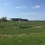 Image of the winery as we drove back to downtown Grand Bend.
