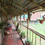 Leela's Eco Cafe, Farm and B & B Picture