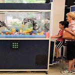 Learn about various scientific principles with our hands-on exhibits.