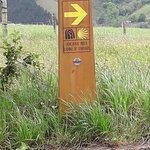 Camino Way Marker