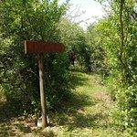percorso Birdgarden