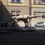 Foto de Museo di Storia Naturale - Antropologia e Etnologia
