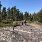 McGillivray Falls Self-guiding Trail Photo