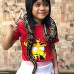 tame python