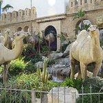 Sculptures de chameaux
