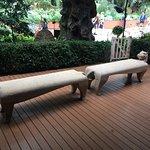 新加坡滨海湾花园照片