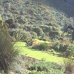 Higher slopes of the gardens