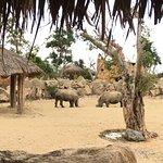 Vinpearl Resort & Spa Nha Trang Bay Fotografie