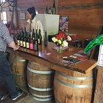 Oyster River Winegrowers Photo