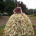 Flower Show Doll