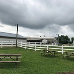 Hopkins Farm Creamery Picnic Tables