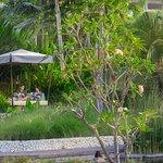 Pavilion Villa Outdoor Gazebo