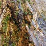 Billede af Weeping Rock Trail