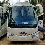 Comfy busses