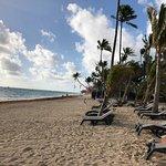 Occidental Punta Cana Foto
