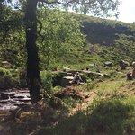 Foto de Bronte Waterfall