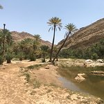 Photo of Tours Oman Private Day tours
