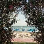 Paloma Pasha Resort照片