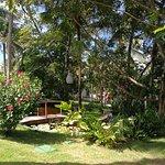 写真Madeiro Beach Hotel & Resort枚