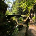 Robert Treman State Park Photo