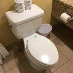 Vazo sanitário higienizado, sem riscos, manchas ou trincados