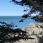 Western Head Preserve Cutler Maine Photo