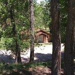 Cute cabins