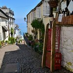 Clovelly in spring