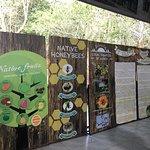 Ilog Maria Honeybee Farm Photo
