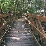 Raintrees Resort-bild