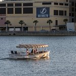 A tiny tour boat makes its rounds