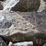 up close of one of many petroglyph