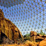 Desert exhibit