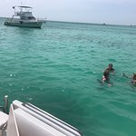 Octopus Aruba Private Snorkelen One Happy Island Caribbean Crystal Clear Blue Water