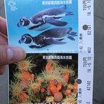 Tokyo Sea Life Park-bild