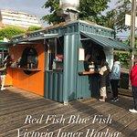 Foto de Red Fish Blue Fish