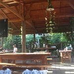 Bognot Lodge : Alvin Bognot Mt Pinatubo Guesthouse and Tours Foto