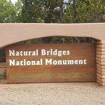 写真Natural Bridges National Monument枚