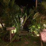 Foto de Folk Pool & Gardens