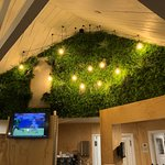 A feature in the main restaurant - living wall