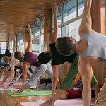 Ashtanga Yoga classes at Rishikul Yogshala, Yoga teacher training in rishikesh