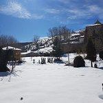 Jardin con nieve