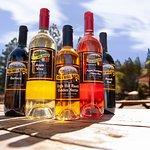 Try our award winning Apple Wine!