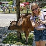Selfie with a cow, Big Buddha, Lantau Island, Hong Kong